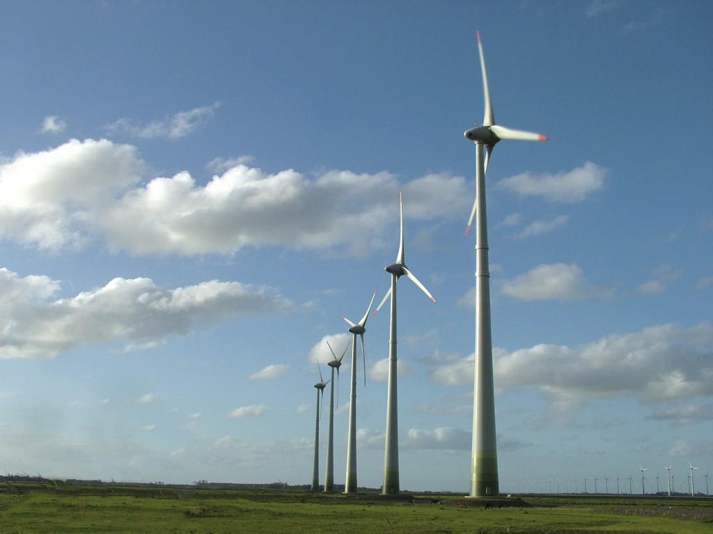 Energías renovables y eólica: Elecnor obtiene un beneficio neto de 48,5 millones de euros