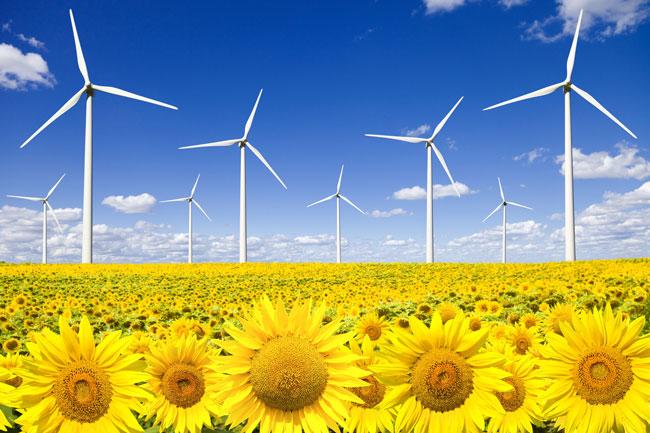 Eólica y energías renovables: Municipios de Castilla y León a favor de la energía eólica
