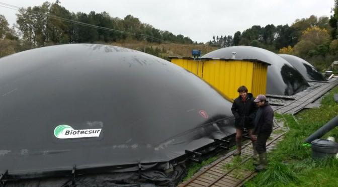 Chile biomasa