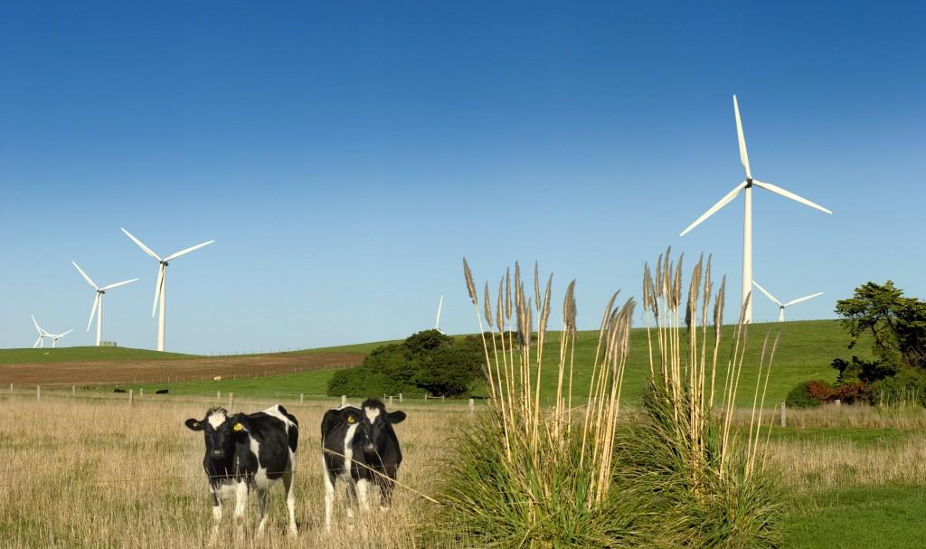 Australia-wind energy-wind farm