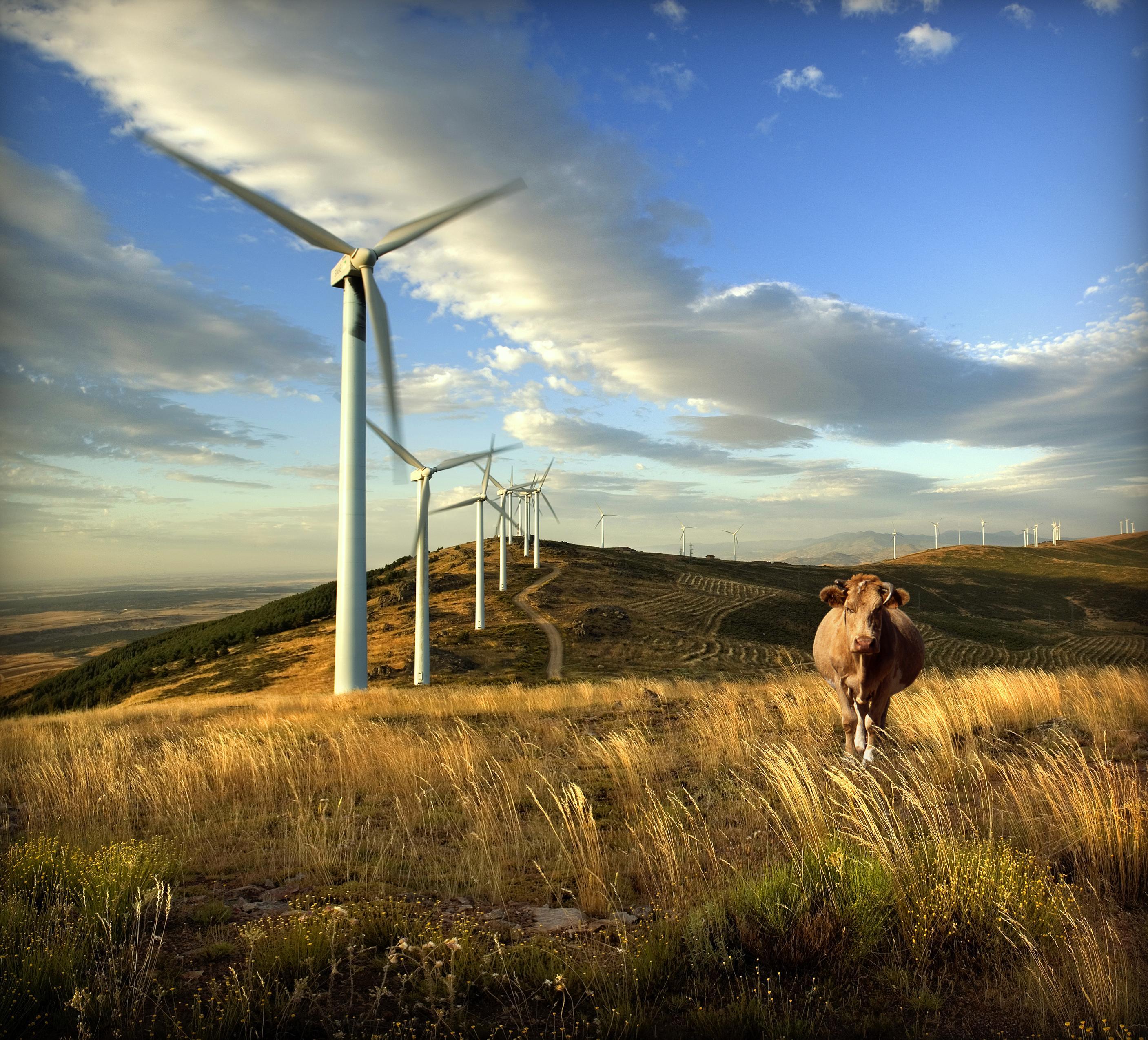 Eólica en la CV: Fabra afirma que el sector eólico crea empleo y riqueza