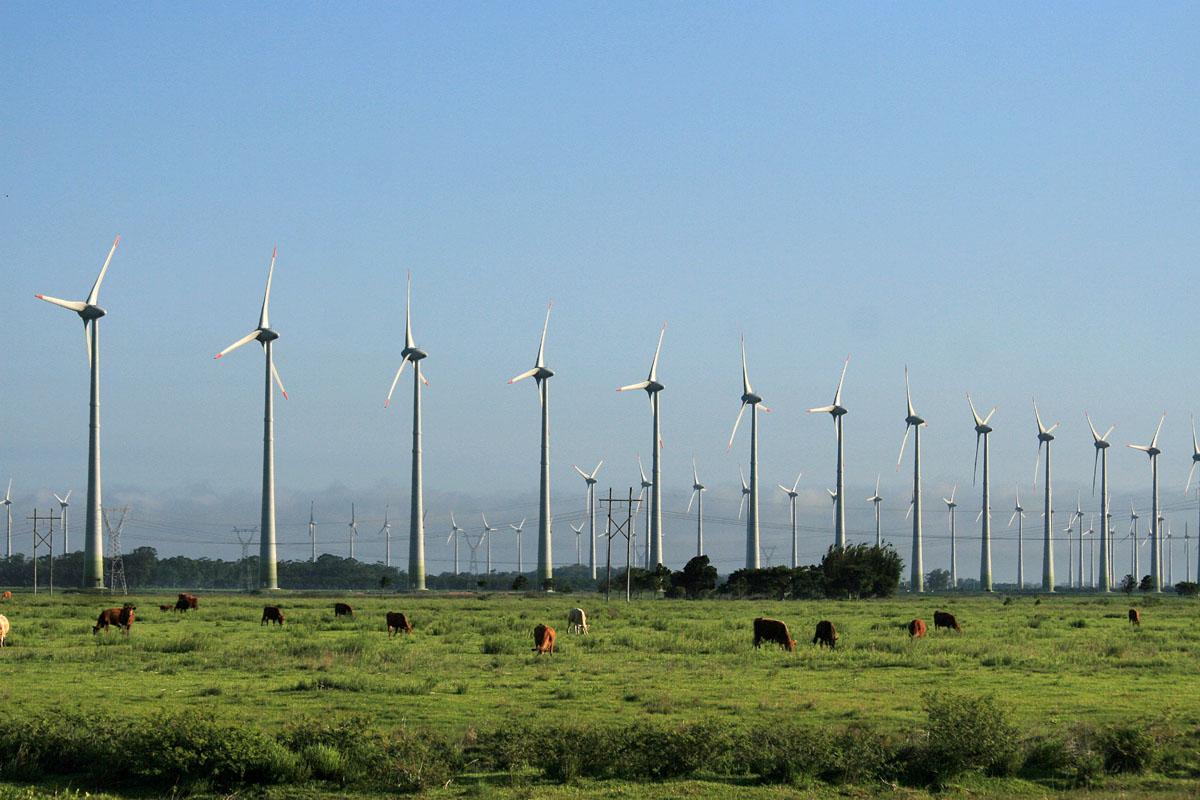 Eólica en México: Parque Eólico de Cozumel
