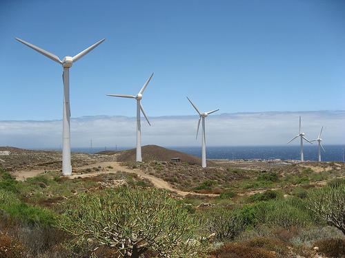 Eólica en Canarias: aprueban nuevo proyecto eólico