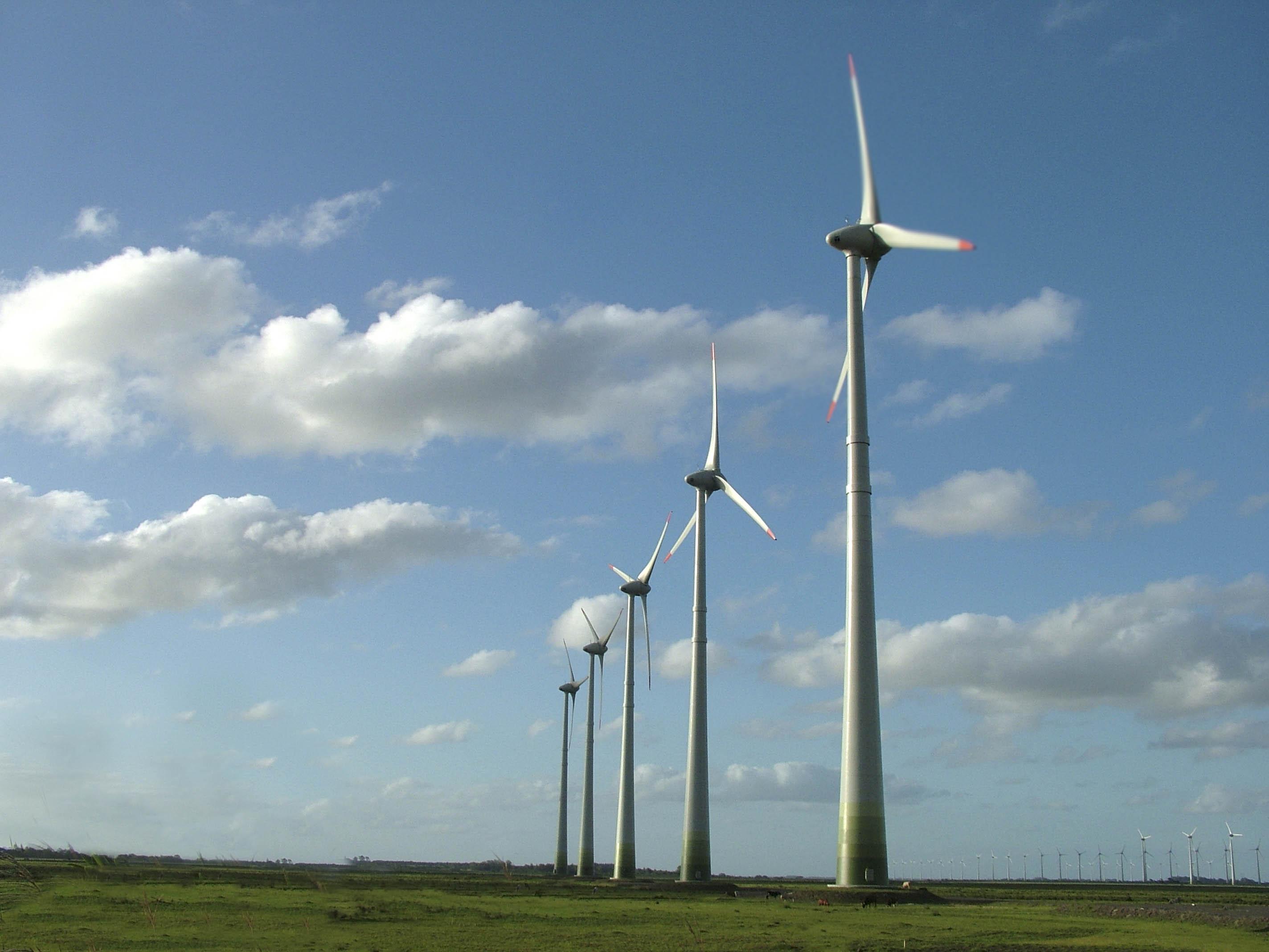 Elecnor y APG se unen para transmisión de eólica y energías renovables en Latinoamérica