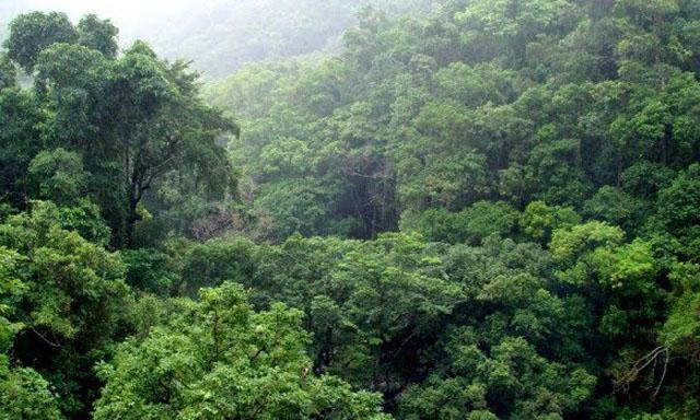 Inundar la Amazonia con hidroeléctricas