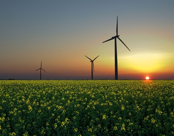 Alemania, China y ocho países más se unen para potenciar las energías renovables
