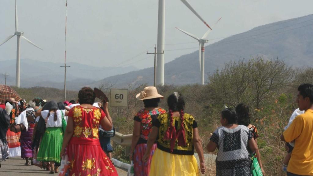Eólica en Oaxaca, con1.186 aerogeneradores, a la cabeza del sector eólico de México.