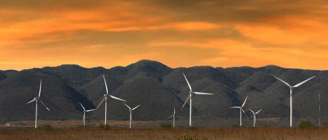 Energías renovables en Tamaulipas: desarrollo de la energía eólica con la instalación de aerogeneradores