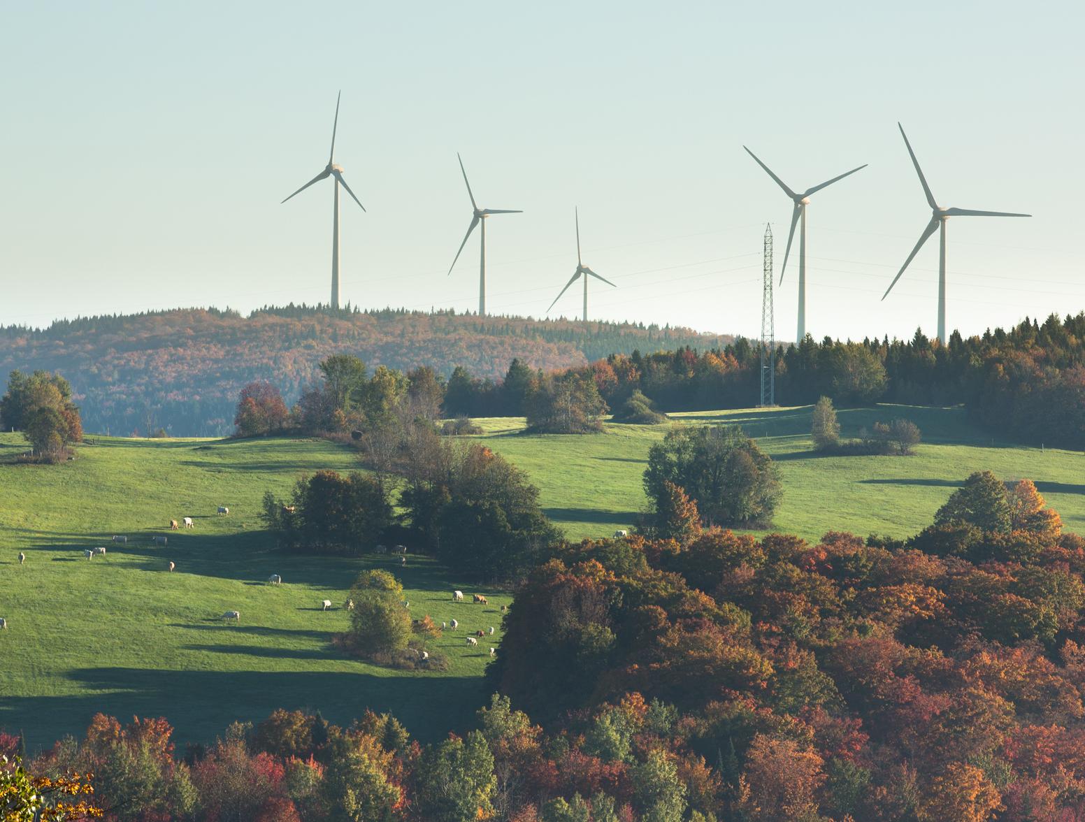 Eólica y energías renovables: Elecnor pone en marcha su primer parqué eólico en Canadá con 50 aerogeneradores