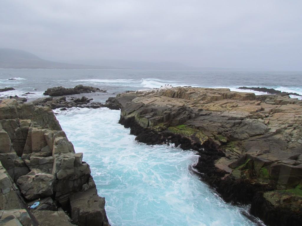 Energías Renovables Marinas: Centros de Excelencia en Energía Marina en Chile