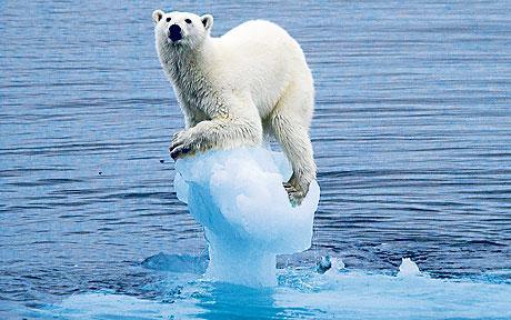 La Cumbre del Cambio Climático se cierra sin resultados concretos en el año más caliente