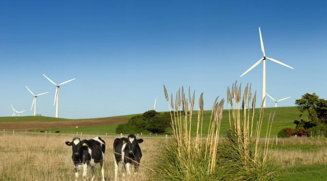 La energía eólica crea puestos de trabajo en Queensland