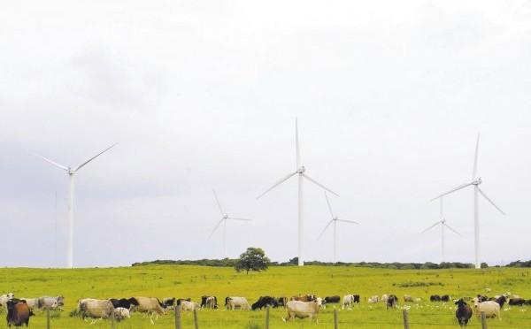 Energías renovables en Nicaragua: eólica y geotérmica contarán con beneficios fiscales a inversiones
