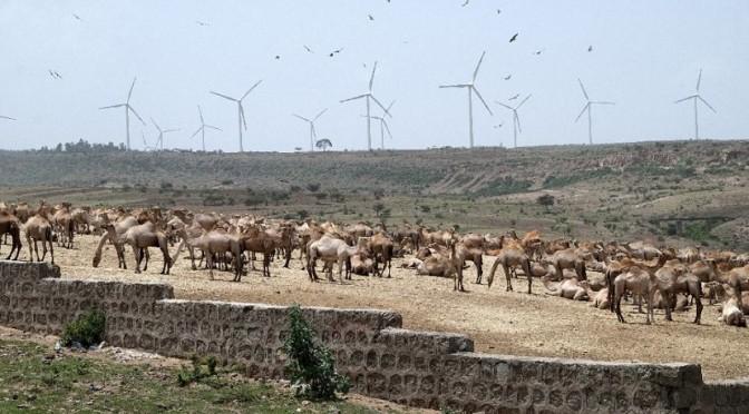 Dinamarca y Etiopía firman acuerdo de energías renovables
