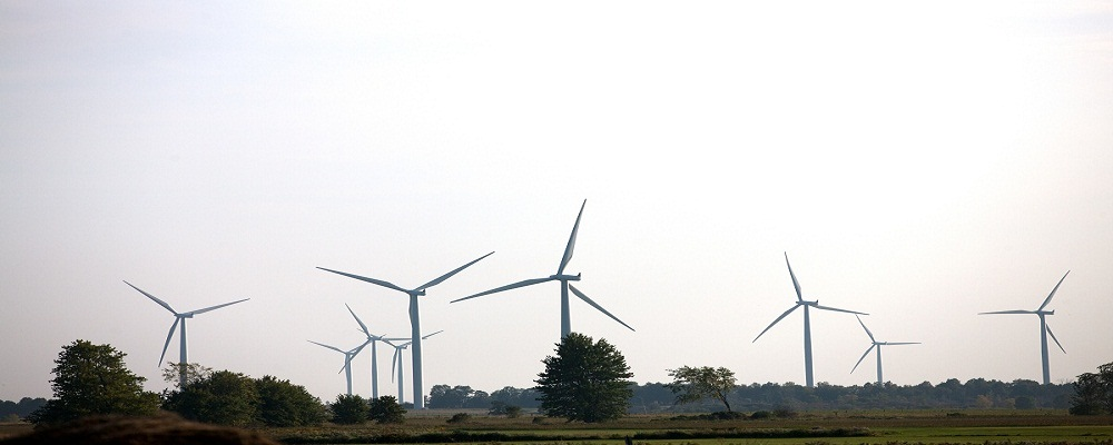 view of a wind turbine in a row