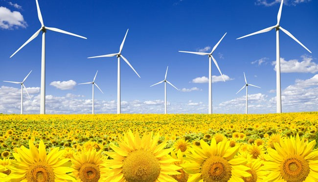 Líderes de Norteamérica se comprometen con energías renovables