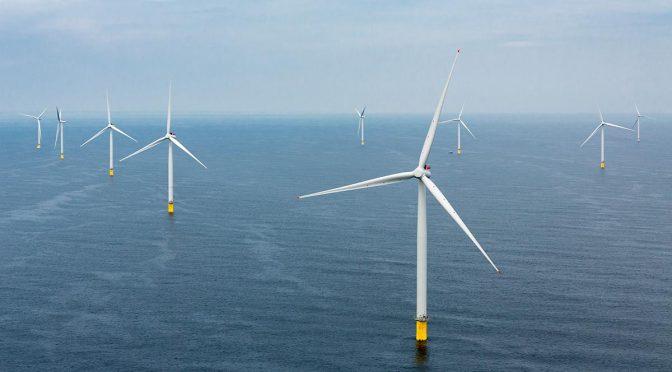 Los costes de la energía eólica marítima belga caen a 79 €/MWh