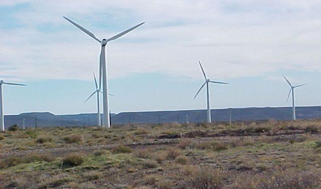 Argentina desaprovecha energía eólica