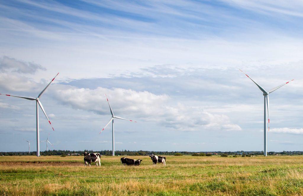 Siemens will provide three direct drive wind turbines each with a rotor diameter of 113 meters and a rating of 3.2 MW for the project Naundorf located in Germany between Dresden and Leipzig.Siemens liefert drei Direct-Drive-Windturbinen mit einem Rotordurchmesser von 113 Metern und einer Nennleistung von je 3,2 Megawatt für den Windpark Naundorf, der zwischen Dresden und Leipzig liegt.