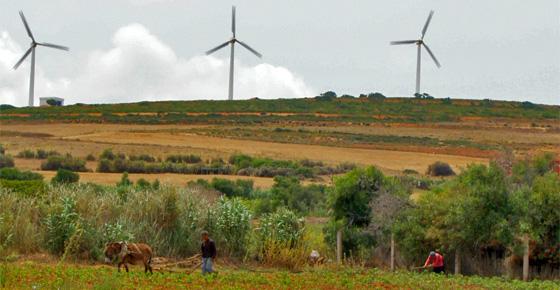 Túnez adjudica los primeros contratos de eólica