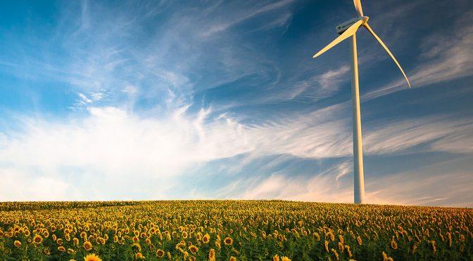 Las últimas subastas demuestran que la energía eólica terrestre será crucial para la transición energética.
