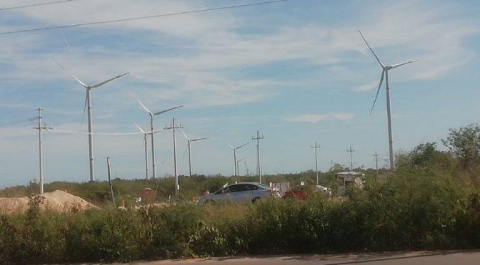 Eólica en Yucatán, Avanza parque eólico de Progreso