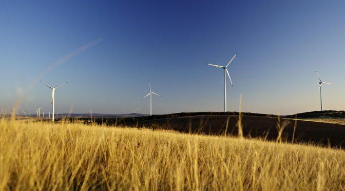 Día mundial del viento: la energía eólica del futuro liderará la recuperación verde