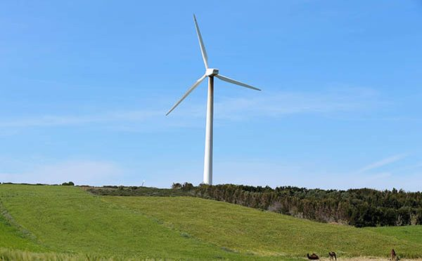 Energía eólica en Túnez, gran parque eólico como parte del plan de energías renovables
