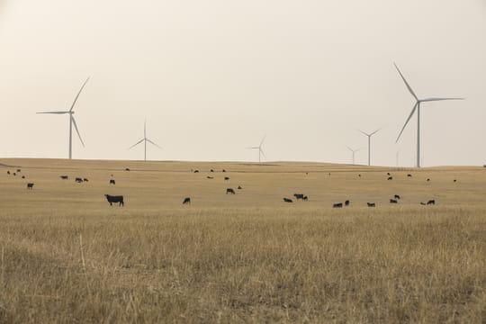 Ørsted completa el parque eólico Willow Creek y toma la decisión final de inversión en la eólica Western Trail