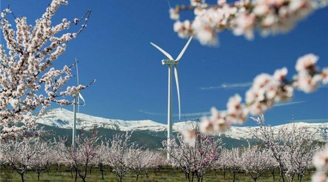 Iberdrola inicia un conjunto de energía eólica de 79 MW entre Málaga y Sevilla, en Andalucía