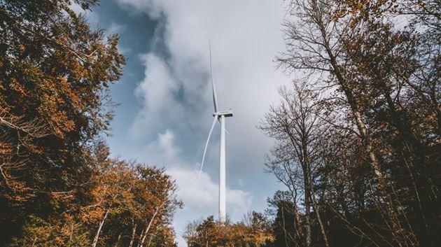 La eólica, responsable del 25,5% de la electricidad producida en marzo