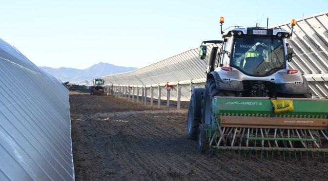 Agrivoltaica, un nuevo concepto que Endesa aplica en sus plantas renovables en España
